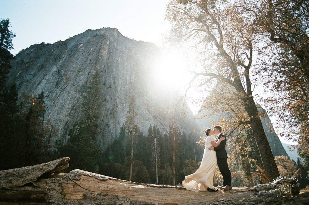 vintage wedding dress in Yosemite